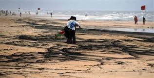 Officials stand baffled as tourist season begins red flagged due to Tarball invasion on Calangute Beach