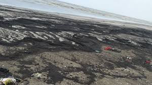 Tarballed Mashem Beach is a reserved turtle nesting ground